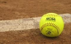 Softball Preview