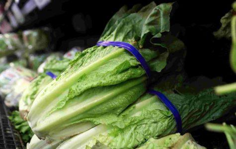 Lethal Lettuce