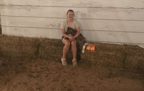 4-H at the Wayne County Fair