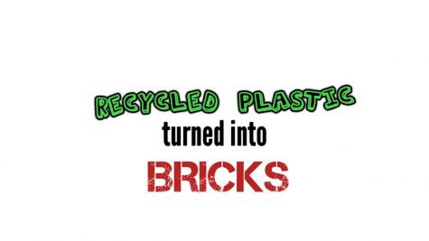 Helping the Environment, One Brick at a Time.